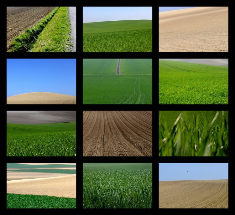 cc -photo-paysageométrie